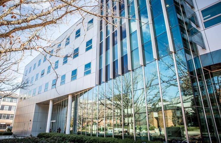 essay structure sydney university
